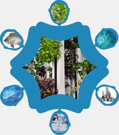 European aquaponics professionals